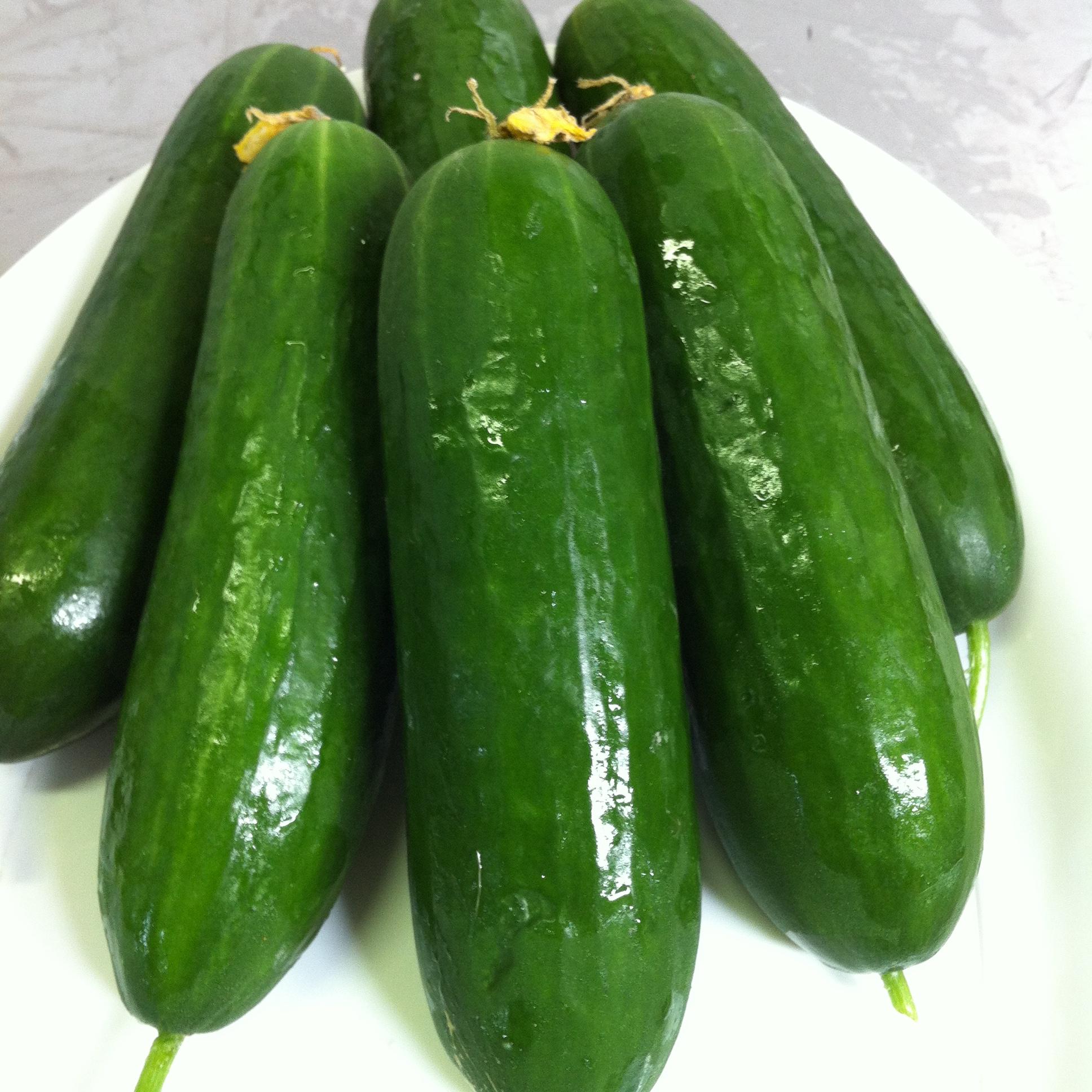Lebanese Cucumber kg