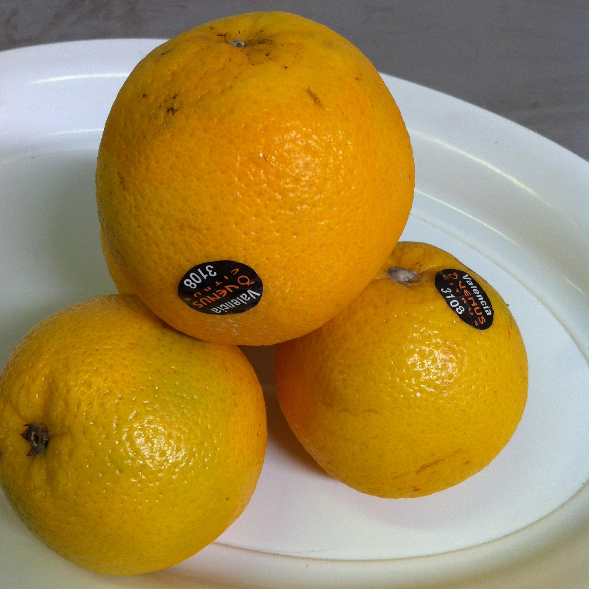 Valencia Oranges kg