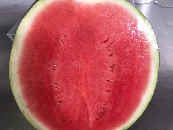 water melon CUT